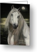 White White Horse Pastels Greeting Cards - Moonlight Greeting Card by Sabine Lackner