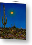 Vibrant Colors Greeting Cards - Moonlight Serenade Greeting Card by Johnathan Harris