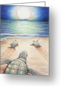 Sea Turtles Greeting Cards - Moonlit March Greeting Card by Amy S Turner