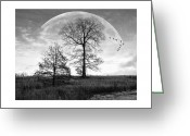 Gray-scale Greeting Cards - Moonlit Silhouette Greeting Card by Brian Wallace