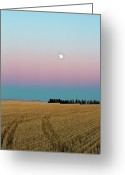 Prairie Greeting Cards - Moonrise Greeting Card by Images by Christine De Bruyn Photography