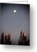 Full Moons Greeting Cards - Moonshine Greeting Card by Aimee L Maher
