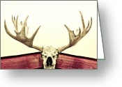 Antlers Greeting Cards - Moose Trophy Greeting Card by Priska Wettstein