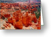 Ponderosa Greeting Cards - More Bryce Greeting Card by Robert Bales