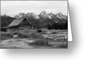 Bison Range Greeting Cards - Mormon Row Famous Barn Greeting Card by Teresa Zieba