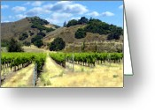 Mountains Greeting Cards - Morning at Mosby Vineyards Greeting Card by Kurt Van Wagner