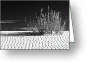 Sand Dunes Greeting Cards - Morning at White Sands  Greeting Card by Sandra Bronstein