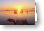 Saco River Greeting Cards - Morning Calm Greeting Card by David Bishop