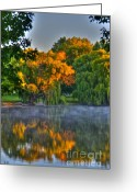 Black Artwork Greeting Cards - Morning Color-2 Greeting Card by Robert Pearson