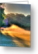 Black Artwork Greeting Cards - Morning Color-3 Greeting Card by Robert Pearson