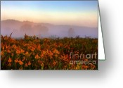 Autumn Art Greeting Cards - Morning Color-7 Greeting Card by Robert Pearson