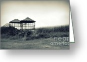 Photography Pyrography Greeting Cards - Morning Corn 2 Greeting Card by Perry Webster