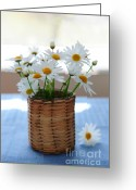 "\""small House\\\"" Greeting Cards - Morning daisies Greeting Card by Elena Elisseeva"