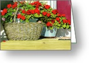Impatiens Flowers Greeting Cards - Morning Impatiens Greeting Card by Tom Hedderich
