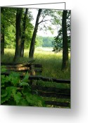 Split Rail Fence Greeting Cards - Morning Light-Carriage Hill Greeting Card by Sheila Rodgers