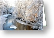 White River Scene Greeting Cards - Morning Light Fresh Snowfall Gauley River Greeting Card by Thomas R Fletcher