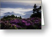 Appalachian Trail Greeting Cards - Morning on Grassy Ridge Bald Greeting Card by Rob Travis