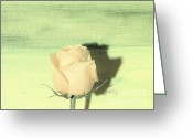 Digitalized Digital Art Greeting Cards - Morning Sun Rose Greeting Card by Marsha Heiken