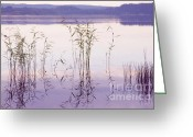 Hall Greeting Cards - Morning Zen. Pearly Moments of Sunrise. Ladoga Lake. Northern Russia Greeting Card by Jenny Rainbow