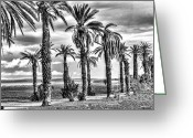 Rabat Greeting Cards - Morocco Landscape II Greeting Card by Chuck Kuhn
