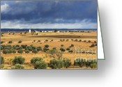 Rabat Greeting Cards - Morocco Landscape III Greeting Card by Chuck Kuhn