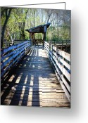 Passageways Greeting Cards - Morris Bridge Boardwalk Greeting Card by Carol Groenen