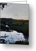 Reeds Reflections Greeting Cards - Morro Rock Greeting Card by Patricia Stalter