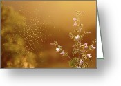 Mosquito Greeting Cards - Mosquito Around Flowers Greeting Card by Paulo Dias Photography