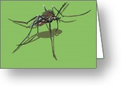 Mosquito Greeting Cards - Mosquito Greeting Card by Jude Labuszewski