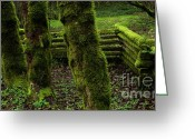 Split-rail Fence Greeting Cards - Mossy Fence Greeting Card by Bob Christopher