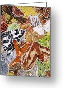 Camouflaged Painting Greeting Cards - Moth Madness Greeting Card by Renata Wright