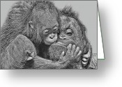 Orangutans Greeting Cards - Mother Love Greeting Card by Larry Linton