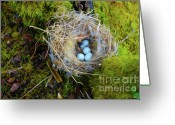 Easter Digital Art Greeting Cards - Mother of Four Greeting Card by Laura Brightwood