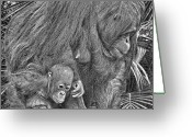 Orangutans Greeting Cards - Motherly Love Greeting Card by Larry Linton