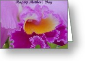 Flower Cards Greeting Cards - Mothers Day Greeting Card by Aimee L Maher