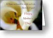 Sentiments Greeting Cards - Mothers Day Card Greeting Card by Cindy Wright
