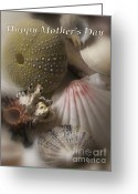 Seashell Art Greeting Cards - Mothers Day Greeting Card by Denise Oldridge