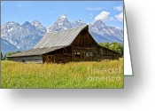 Grand Tetons National Park Greeting Cards - Moulton Barn on Mormon Row Greeting Card by Teresa Zieba