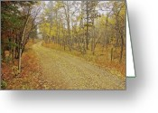 Colorado Greeting Cards Greeting Cards - Mounment Gulch Rd. CO Greeting Card by James Steele