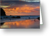 Oceania Greeting Cards - Mount Maunganui Beach Sunset Greeting Card by John Buxton