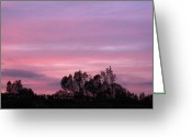 After Sunset Greeting Cards - Mount Palomar Winery After Sunset Greeting Card by Viktor Savchenko
