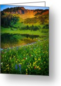 Lupines Greeting Cards - Mount Rainier Lake Greeting Card by Inge Johnsson