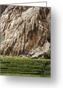 Foothill Greeting Cards - Mountain and Fields Greeting Card by Hitendra Sinkar