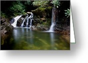 Skinny Dip Greeting Cards - Mountain Falls Greeting Card by Will Candler