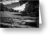 Black And White Photography Photo Greeting Cards - Mountain Field Greeting Card by Bob Orsillo