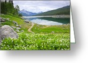 Alberta Landscape Greeting Cards - Mountain lake in Jasper National Park Canada Greeting Card by Elena Elisseeva