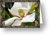 Rosy Greeting Cards - Mountain Magnolia Greeting Card by Bell And Todd