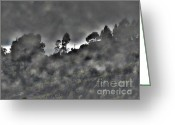 Morn Greeting Cards - Mountain Morning Mist Greeting Card by Al Bourassa