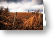 Fence Greeting Cards - Mountain Pasture Greeting Card by Bob Orsillo