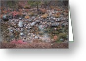 Pebbles Greeting Cards - Mountain River Greeting Card by Irina  March